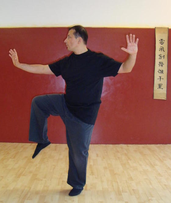 qigong taichi yoga studio tao institut dortmund brackel bildergalerie. Black Bedroom Furniture Sets. Home Design Ideas